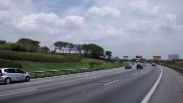 Airton Senna, próximo à chegada a S.P., Parque Ecológico do Tietê (tratamento paisagístico).